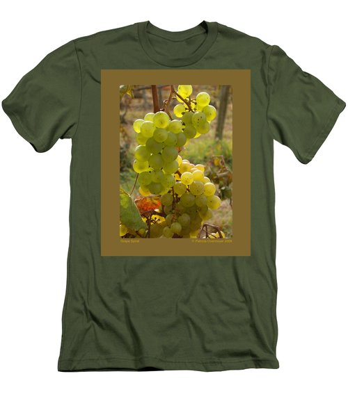 Grape Spiral Men's T-Shirt (Slim Fit) by Patricia Overmoyer