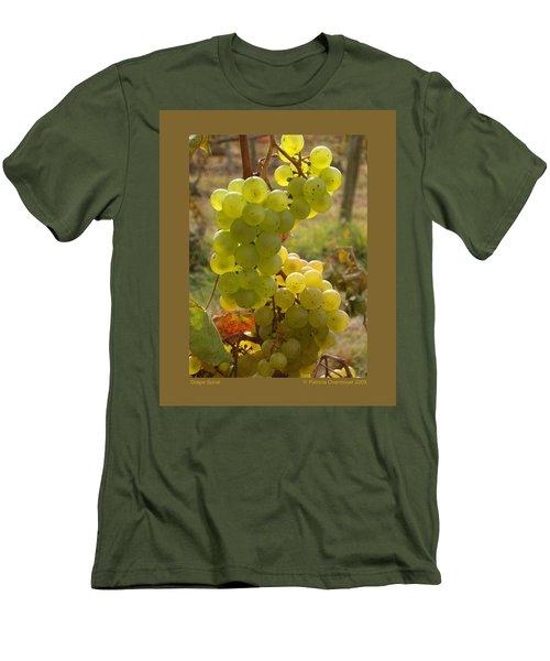 Grape Spiral Men's T-Shirt (Athletic Fit)
