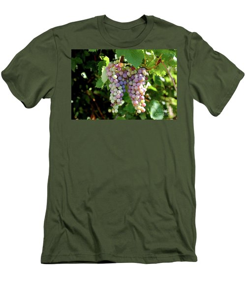 Grapes In Color  Men's T-Shirt (Athletic Fit)