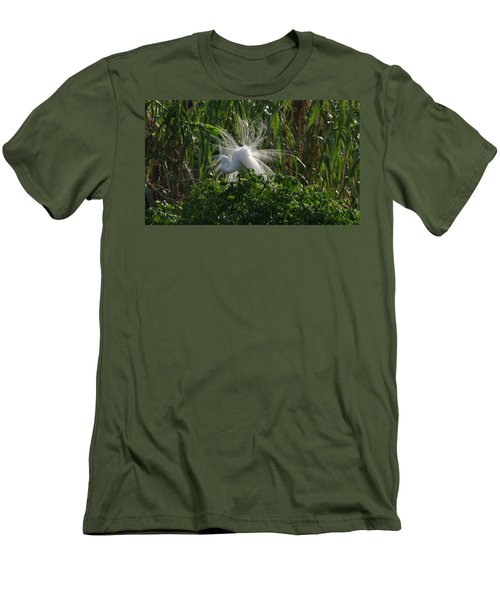 Great Egret Displays Windy Mating Plumage Men's T-Shirt (Athletic Fit)