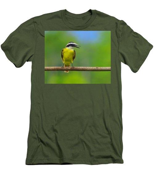 Great Kiskadee Men's T-Shirt (Slim Fit) by Tony Beck