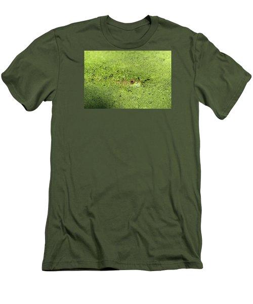 Green Frog Stony Brook New York Men's T-Shirt (Slim Fit) by Bob Savage