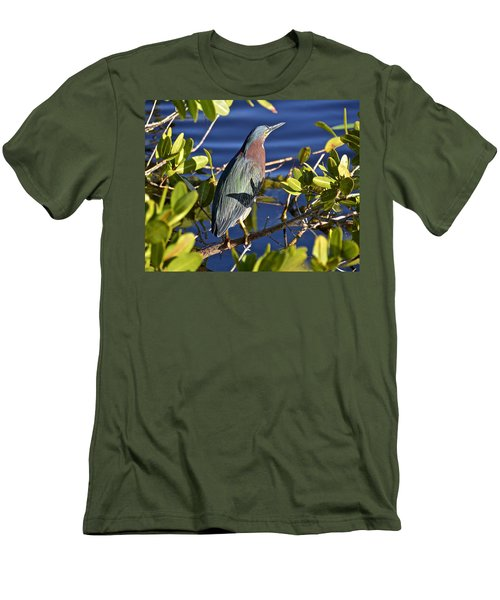 Green Heron Men's T-Shirt (Slim Fit) by Carol Bradley