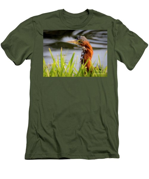 Men's T-Shirt (Athletic Fit) featuring the photograph Green Heron Closeup  by Ricky L Jones
