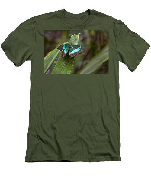Green Moss Peacock Butterfly Men's T-Shirt (Slim Fit) by Peter J Sucy