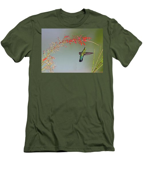Green-throated Carib Men's T-Shirt (Athletic Fit)