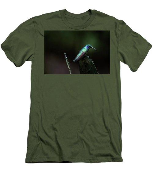 Green Violet Ear Hummingbird Men's T-Shirt (Slim Fit) by James David Phenicie