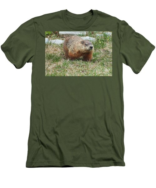 Men's T-Shirt (Slim Fit) featuring the photograph Groundhog by Vicky Tarcau