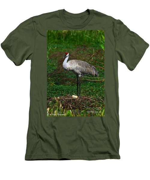 Guarding The Nest Men's T-Shirt (Athletic Fit)
