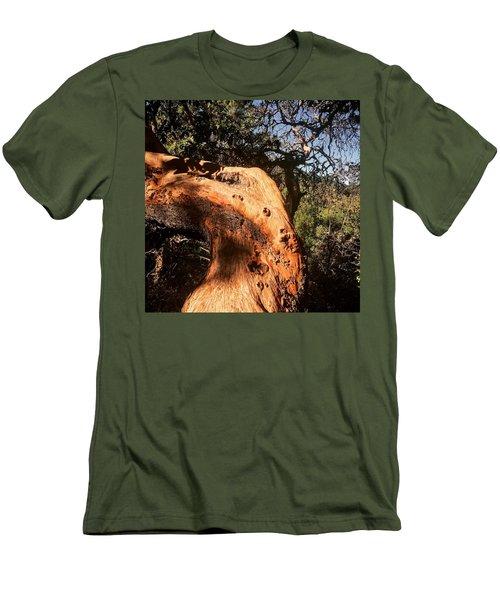 Hard Wood Men's T-Shirt (Athletic Fit)