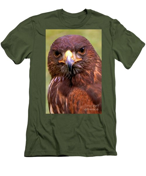 Harris Hawk Portriat Men's T-Shirt (Slim Fit) by Stephen Melia