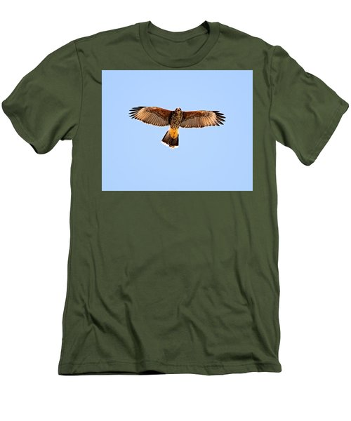 Men's T-Shirt (Athletic Fit) featuring the photograph Harris's Hawk H36 by Mark Myhaver
