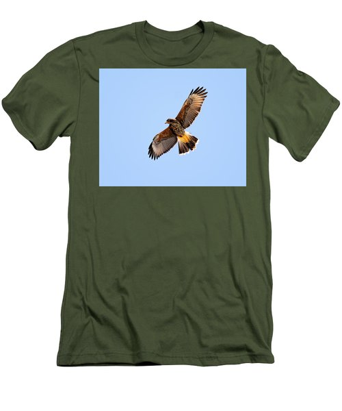 Men's T-Shirt (Athletic Fit) featuring the photograph Harris's Hawk H37 by Mark Myhaver