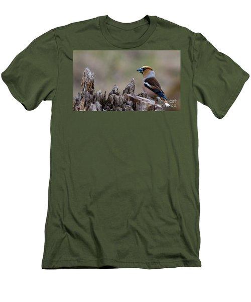 Hawfinch Perching Men's T-Shirt (Slim Fit) by Torbjorn Swenelius