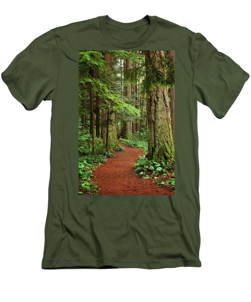 Heritage Forest 2 Men's T-Shirt (Slim Fit) by Randy Hall