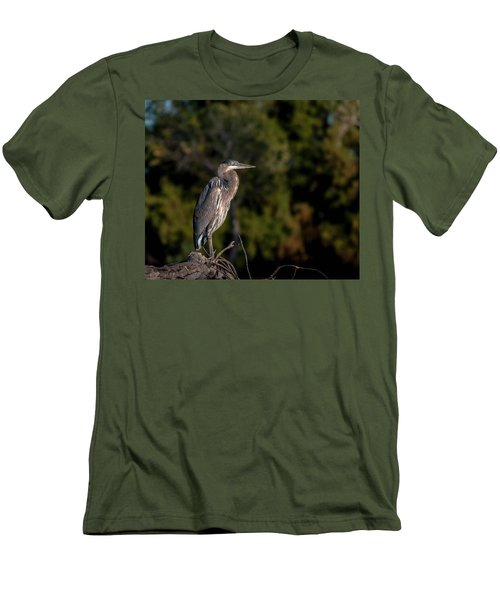 Heron At Sunrise Men's T-Shirt (Slim Fit) by Martina Thompson