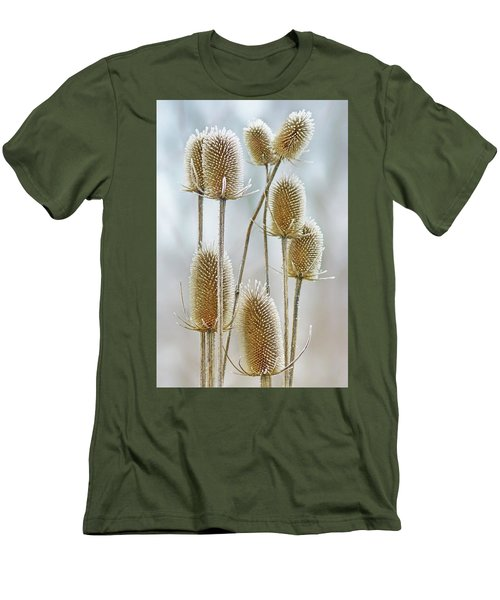Hoar Frost - Wild Teasel Men's T-Shirt (Slim Fit) by Nikolyn McDonald