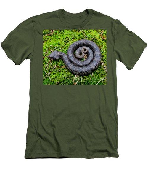 Hognose Spiral Men's T-Shirt (Athletic Fit)