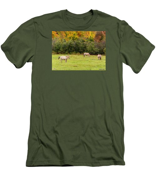 Horses Enjoying A Beautiful Autumn Day Men's T-Shirt (Slim Fit) by Ken Morris