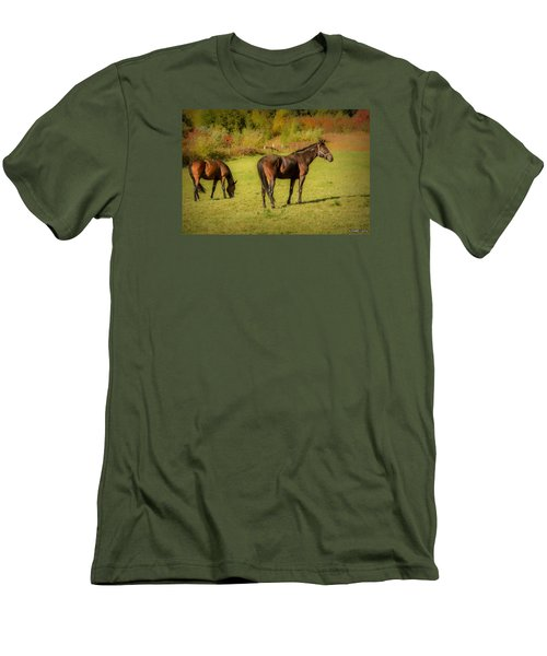 Horses In Mabou Men's T-Shirt (Slim Fit) by Ken Morris