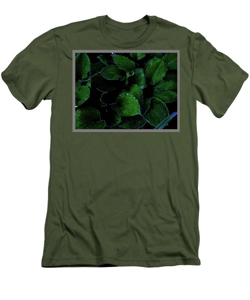Hostas After The Rain II Men's T-Shirt (Athletic Fit)