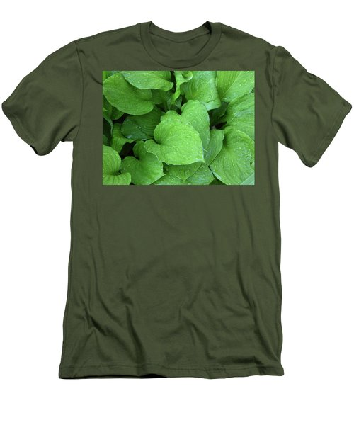 Hostas After The Rain IIi Men's T-Shirt (Athletic Fit)