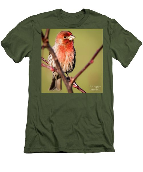 Men's T-Shirt (Athletic Fit) featuring the photograph House Finch In Full Color by Ricky L Jones