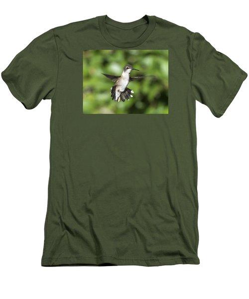 Hovering Hummer Men's T-Shirt (Slim Fit) by Stephen Flint