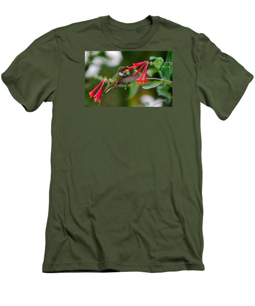 Hummingbird Feeding Men's T-Shirt (Slim Fit) by Gary Wightman
