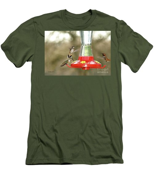 Hummingbird Trio Men's T-Shirt (Athletic Fit)