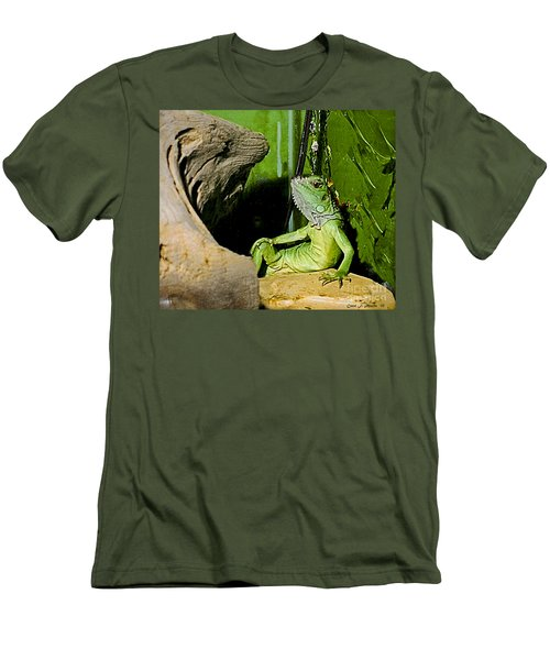 Humorous Pet Iguana Photo Men's T-Shirt (Slim Fit) by Carol F Austin