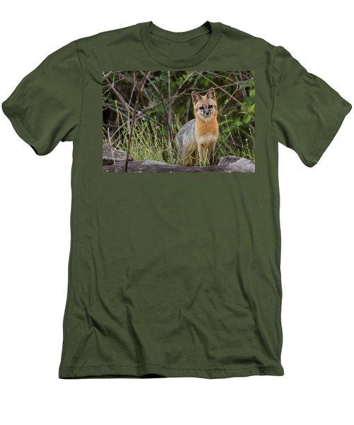 I'm Back Men's T-Shirt (Athletic Fit)