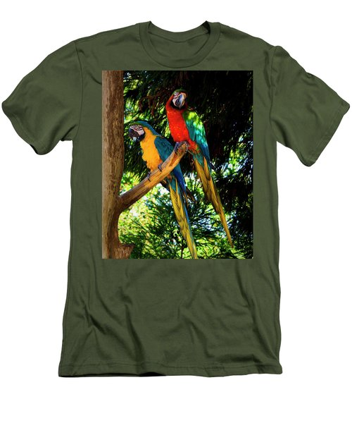 Image Of The Parrott Men's T-Shirt (Athletic Fit)