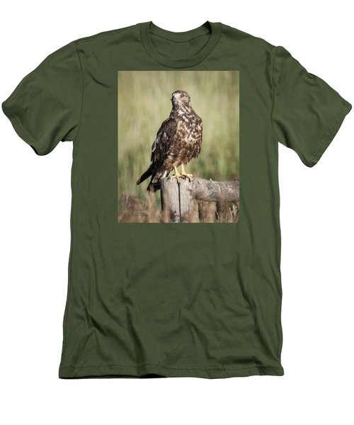 Men's T-Shirt (Slim Fit) featuring the photograph Immature Northern Harrier by Daniel Hebard