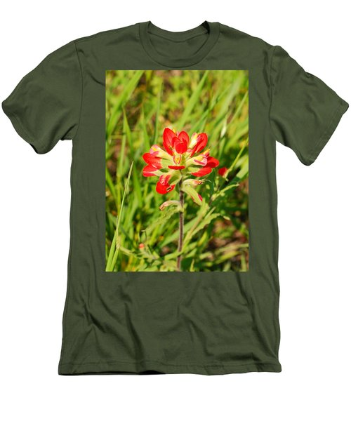 Indian Paintbrush Close Up Men's T-Shirt (Athletic Fit)