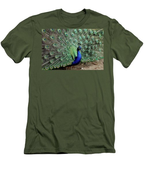 Iridescent Blue-green Peacock Men's T-Shirt (Athletic Fit)