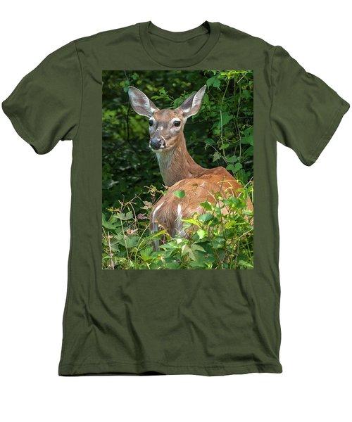Ivy League Doe Men's T-Shirt (Slim Fit)