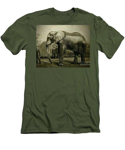 Jumbo The Elepant Circa 1890 Men's T-Shirt (Slim Fit) by Peter Gumaer Ogden