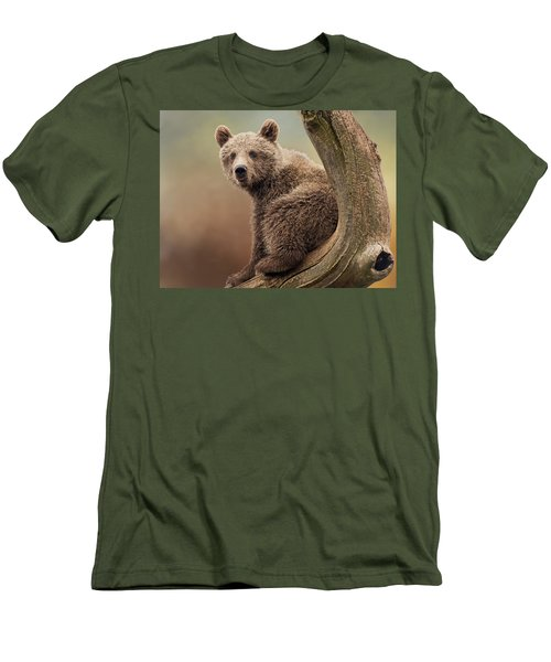 Juvenile Brown Bear - 365-5 Men's T-Shirt (Athletic Fit)