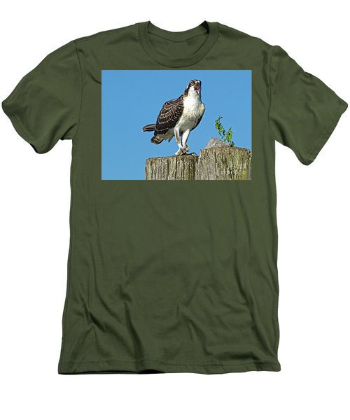 Juvenile Osprey#1 Men's T-Shirt (Athletic Fit)