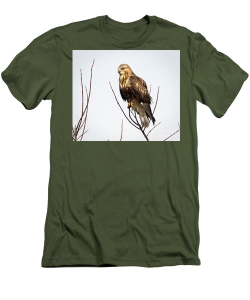 Juvenile Rough-legged Hawk  Men's T-Shirt (Slim Fit) by Ricky L Jones