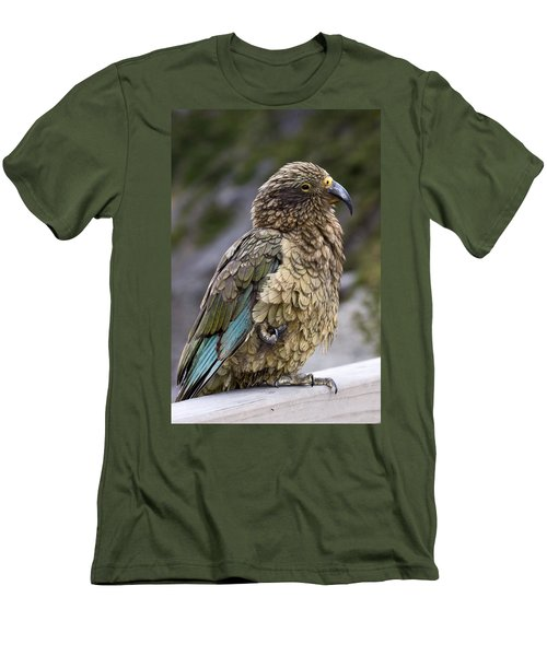Men's T-Shirt (Slim Fit) featuring the photograph Kea Bird by Sally Weigand