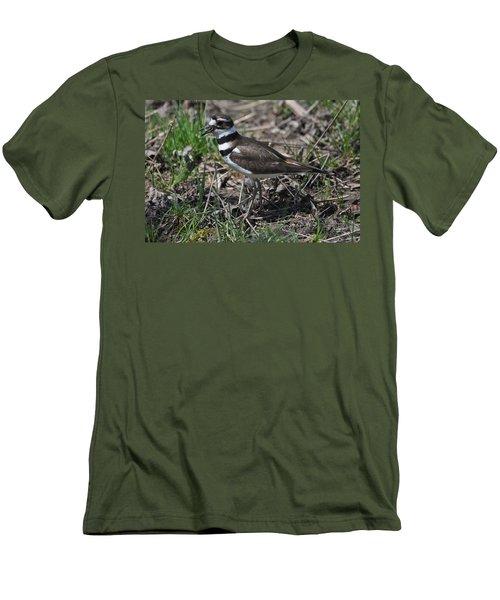 Killdeer Guarding Her Eggs Men's T-Shirt (Athletic Fit)