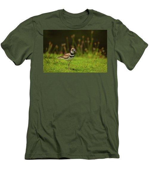 Killdeer Men's T-Shirt (Slim Fit) by Karol Livote