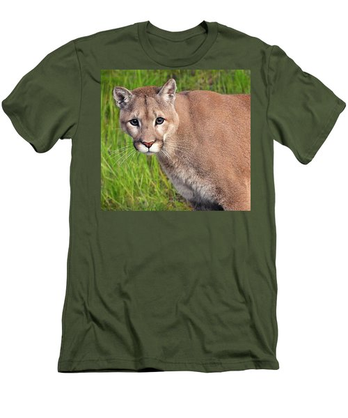 Kitty Look Men's T-Shirt (Athletic Fit)