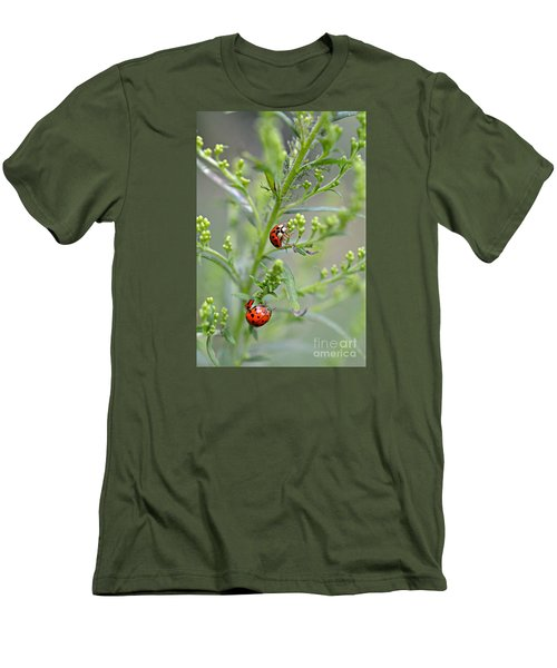 Ladybug Ladybug... Men's T-Shirt (Athletic Fit)