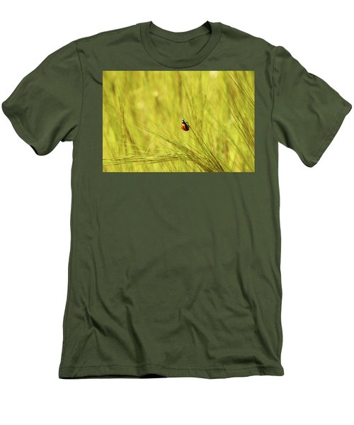 Ladybug In A Wheat Field Men's T-Shirt (Athletic Fit)