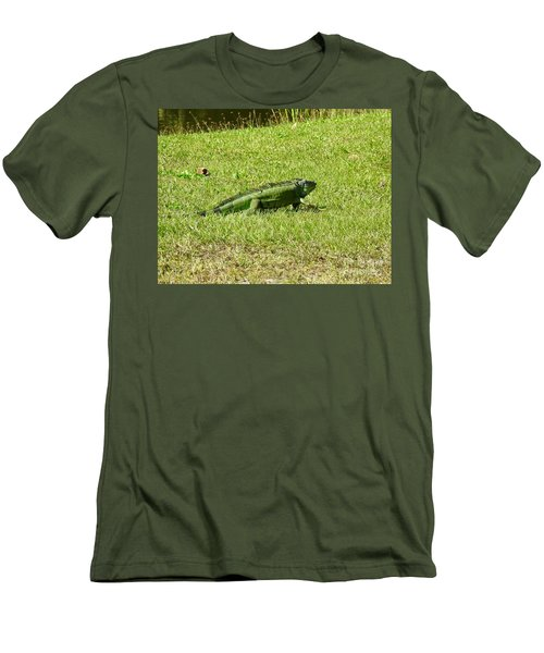 Large Sanibel Iguana Men's T-Shirt (Athletic Fit)