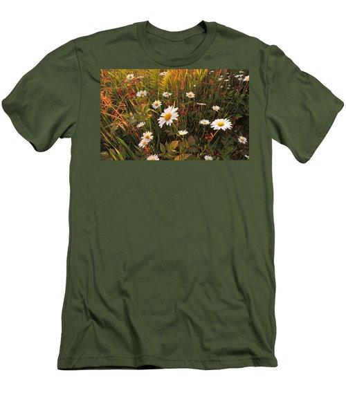 Lazy Days Daisies Men's T-Shirt (Slim Fit) by Karen Horn