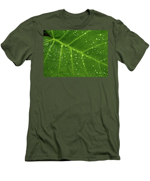 Leaf Drops Men's T-Shirt (Slim Fit) by Art Shimamura